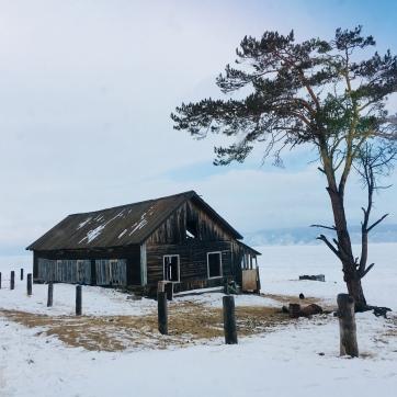 2018 02 17 - Sibérie Baikal Olkhon (162)