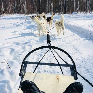 2018 02 19 - Sibérie Listvyanka (35)