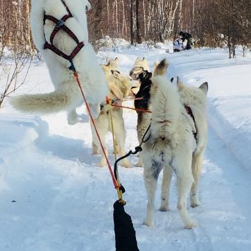 2018 02 19 - Sibérie Listvyanka (38)