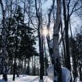 2018 02 19 – Sibérie Listvyanka(51)