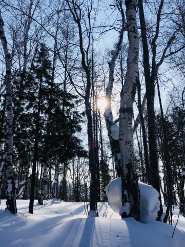 2018 02 19 - Sibérie Listvyanka (51)