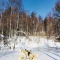 2018 02 19 – Sibérie Listvyanka(52)