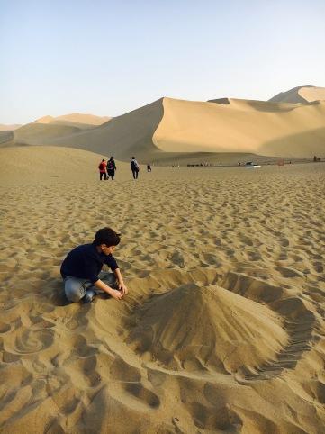 Desert - building dunes in the desert (2)