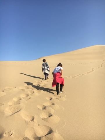 Desert - building dunes in the desert (3)