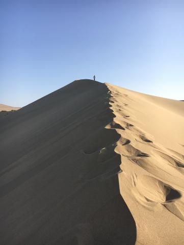Desert - building dunes in the desert (4)