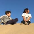 Desert – building dunes in the desert(5)