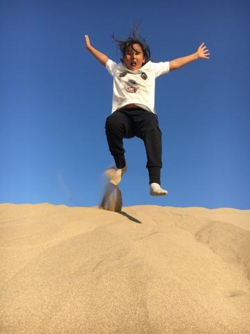 Desert - building dunes in the desert (6)