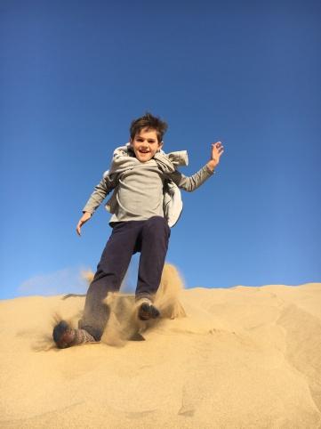 Desert - building dunes in the desert (7)