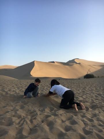 Desert - building dunes in the desert (9)