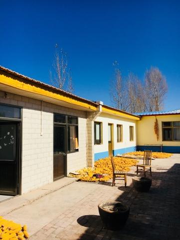 Ecole taoiste (12)